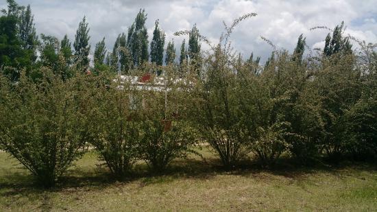 Nono, Argentina: La pileta