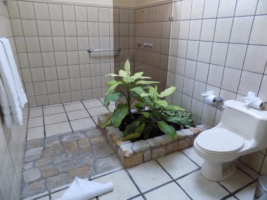 Arenal Manoa Hotel: Garden Bathroom