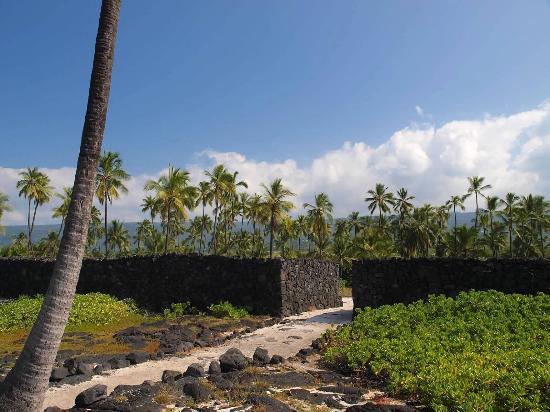Honaunau, Hawaï : photo0.jpg