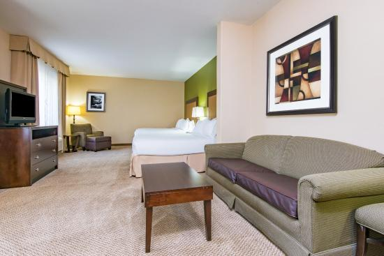 Holiday Inn Express Hotel & Suites Phoenix-Glendale: Guest Room