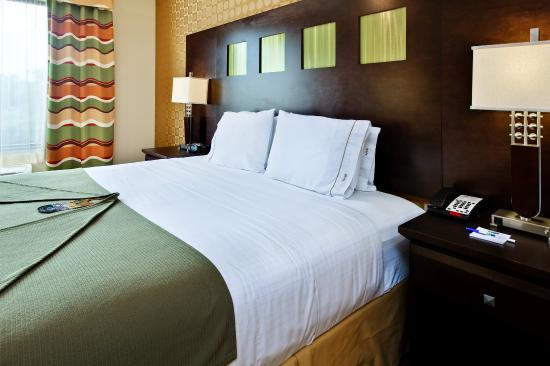 Holiday Inn Express Hotel & Suites Dallas South-DeSoto: King Bed Guest Room