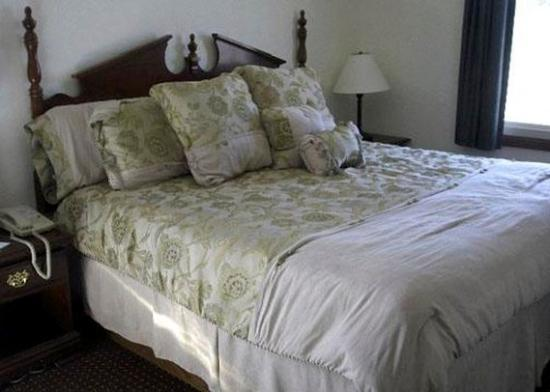 Regency Inn and Suites: Guest room