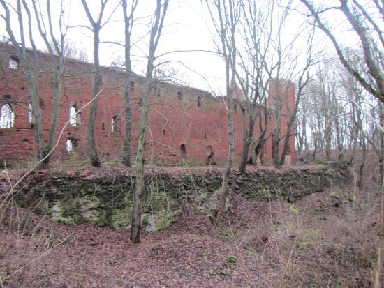 Kaliningrad Oblast, روسيا: 12
