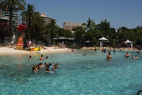 Brisbane sign tripadvisor for Pool show qld