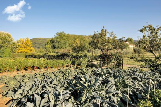 Candeli, Italië: The Chef's Garden