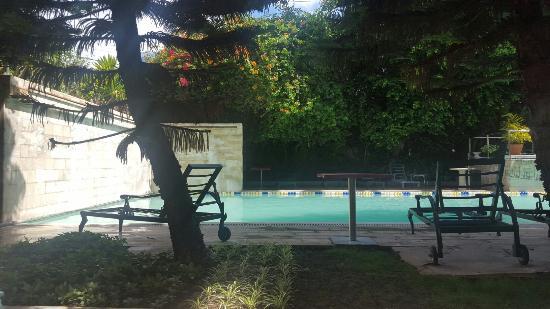 Sunny Garden Hotel: Sunny garden