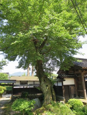 Asahi-machi, Japón: 境内