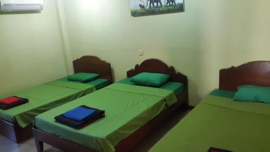 The Dancing Frog Hostel : ROOM