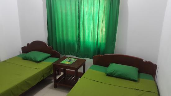 The Dancing Frog Hostel : room