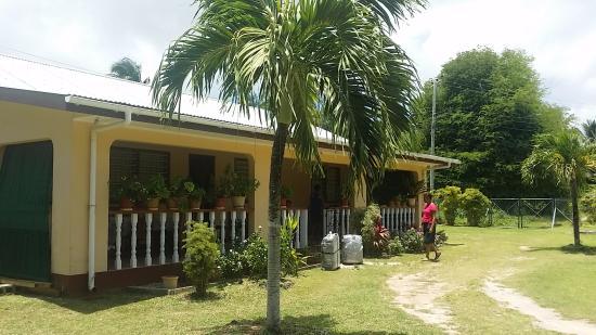 Villa Cocotier: Outside
