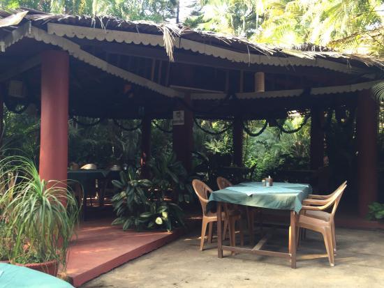 Palm Grove Cottages Photo
