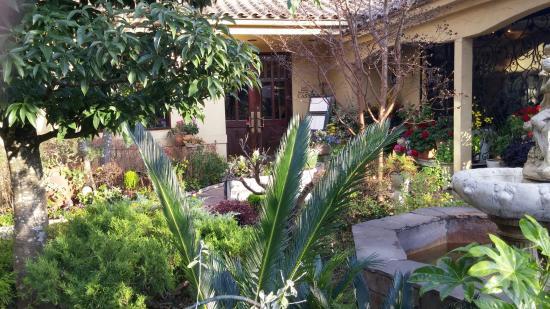 Castello: 冬なのに花咲く庭