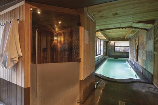Sauna Piscine Pres De Deauville Picture Of Hotel Et Spa Le Lion