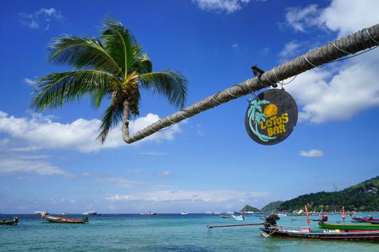 Sairee Sairee Guesthouse: Вид на бухту, которая находится в 3 минутах ходьбы от отеля