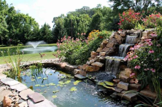 Columbia, PA: Koi pond