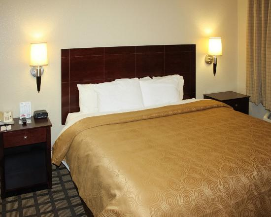 Mainstay Suites : Guest room