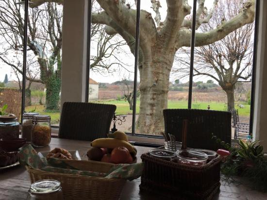 Modene, Francia: Breakfast with a view