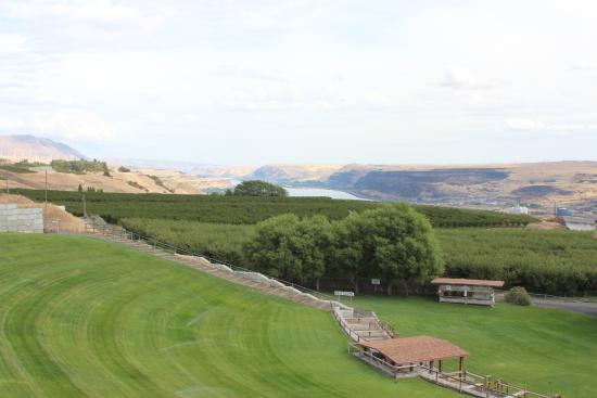 Goldendale, Etat de Washington : MaryHill Winery