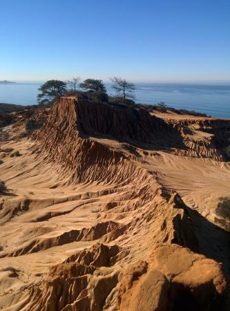Torrey Pines State Natural Reserve: Torrey Pines State Park - View from Broken Hill Overlook.