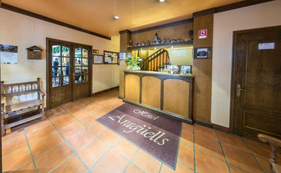 Hotel Araguells: Recepción Hotel
