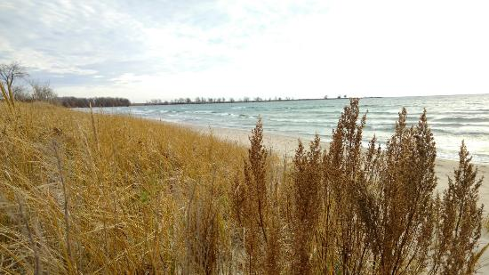 Wolfe Island, Canada: Big Sandy Bay Conservation Area