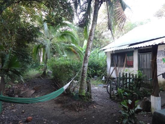 Cabinas el Peresozo: giardino