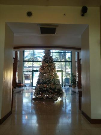 Tegucigalpa Marriott Hotel: Christmas time. December 25, 2015.