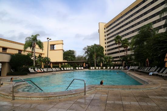 Pool Picture Of Hilton Orlando Lake Buena Vista Disney