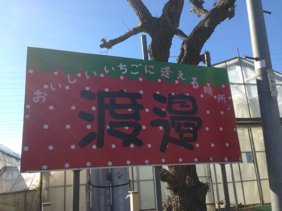 Watanabe Strawberry Farm