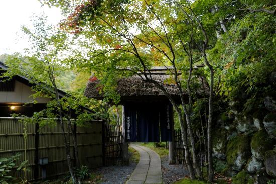 Tenei-mura, Japón: 旅館への小径