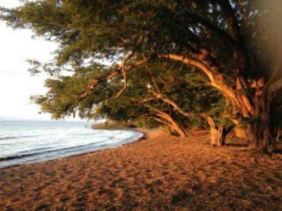 Hotel Museo El Ceibo: Le jour se leve sur el ceibo, a 50 m du bungalow la plage , et c est l heure de rentrer le betai