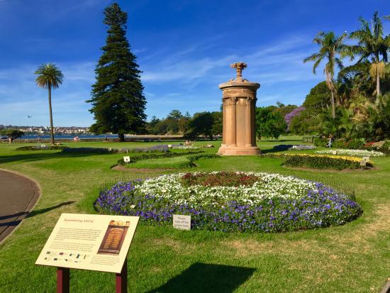 Landscape garden picture of the royal botanic garden for Landscape gardeners sydney
