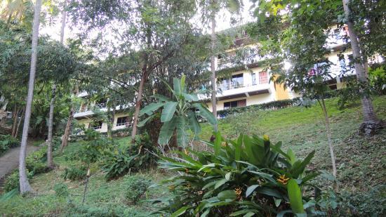 Kata Mountain Inn: отель