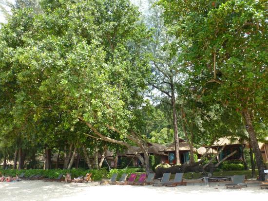 Beach with sun loungers at Tup Kaek Sunset Beach Resort