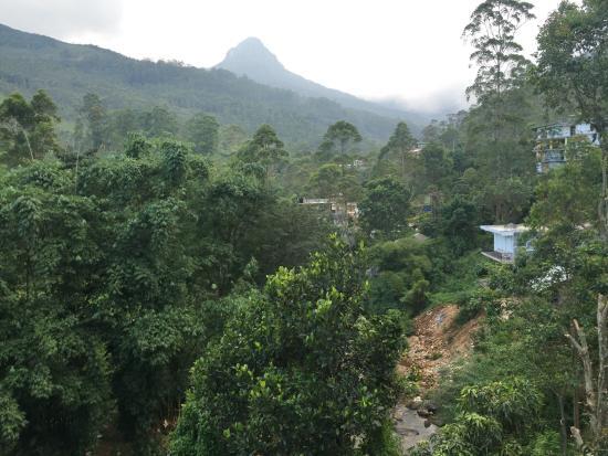 Wathsala Inn : photo3.jpg