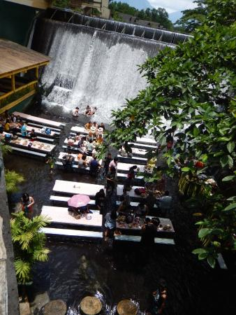 View From Above Picture Of Villa Escudero Tiaong