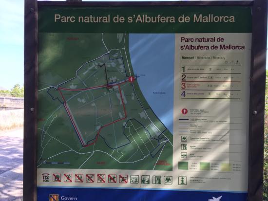 Parque natural s'Albufera de Mallorca: photo0.jpg
