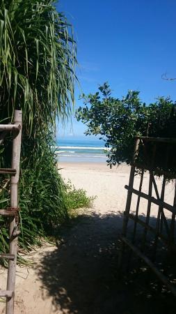 Ninh Phuoc, Vietnam: DSC_1445_large.jpg
