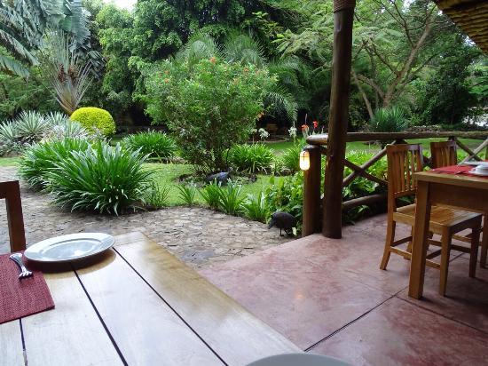 Arumeru River Lodge: Uitzicht vanuit het restaurant !