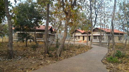 VIP Suite #2 - Picture of MTDC Holiday Resort Tadoba