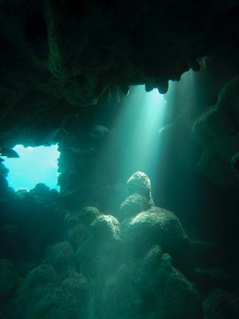 Brendals Dive Center & Water Sports: diving in caverns at coral reef