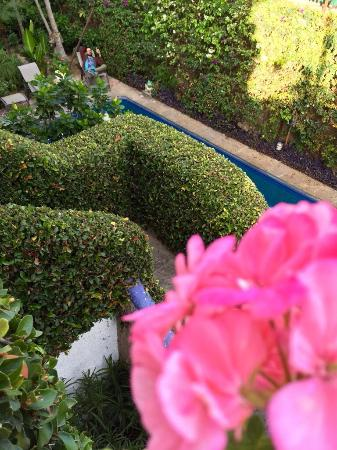 Casa Flores: photo1.jpg