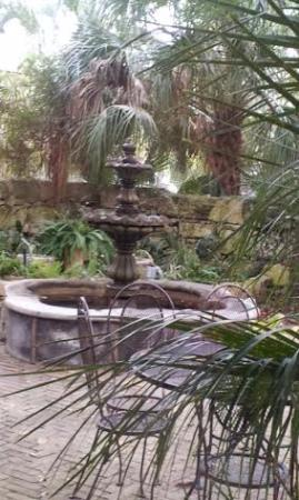 Gazebo At Los Patios: The View From Our Inside Table