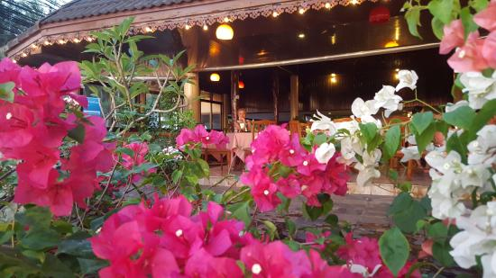 Golden Sand Inn: Breakfast with flowers and sea view