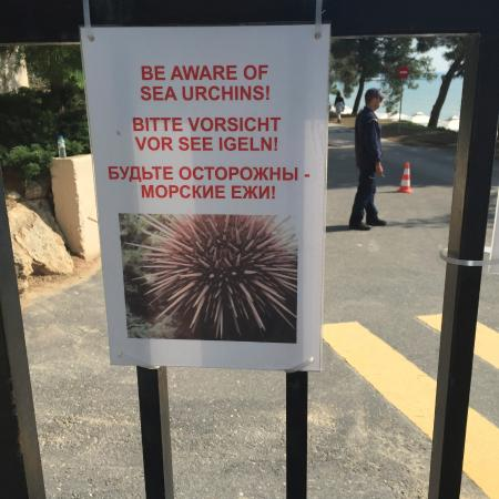 Nea Moudania, Hellas: sea earchin hazard warning: avoid stepping on rocks. stay on the sand