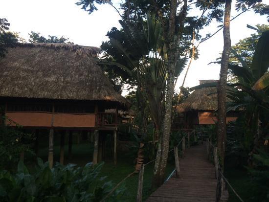 Cotton Tree Lodge: photo0.jpg