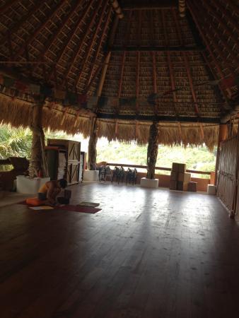 Solstice Yoga Center : Yoga room