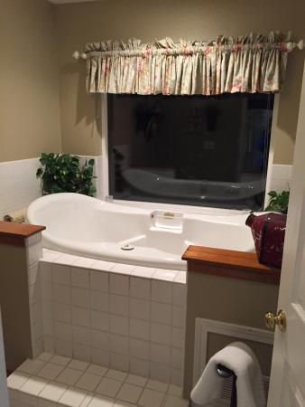 All Seasons River Inn: Riverbend Suite! Had a cute, little Christmas tree, a wonderful view, a relaxing jacuzzi tub, an