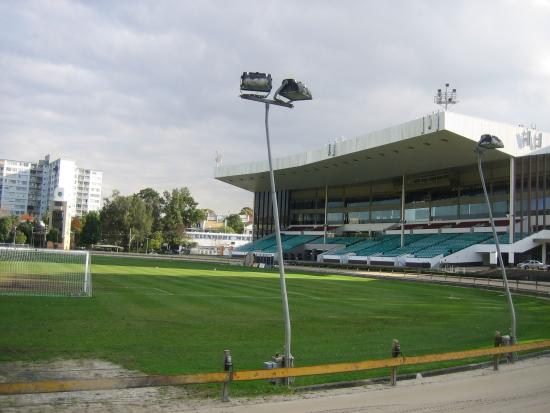 ‪Wentworth Park Greyhound Racing‬
