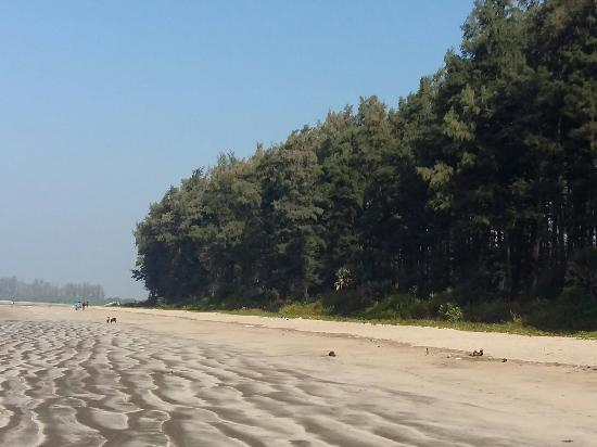 Kelva Beach Resort Kelwa Maharashtra